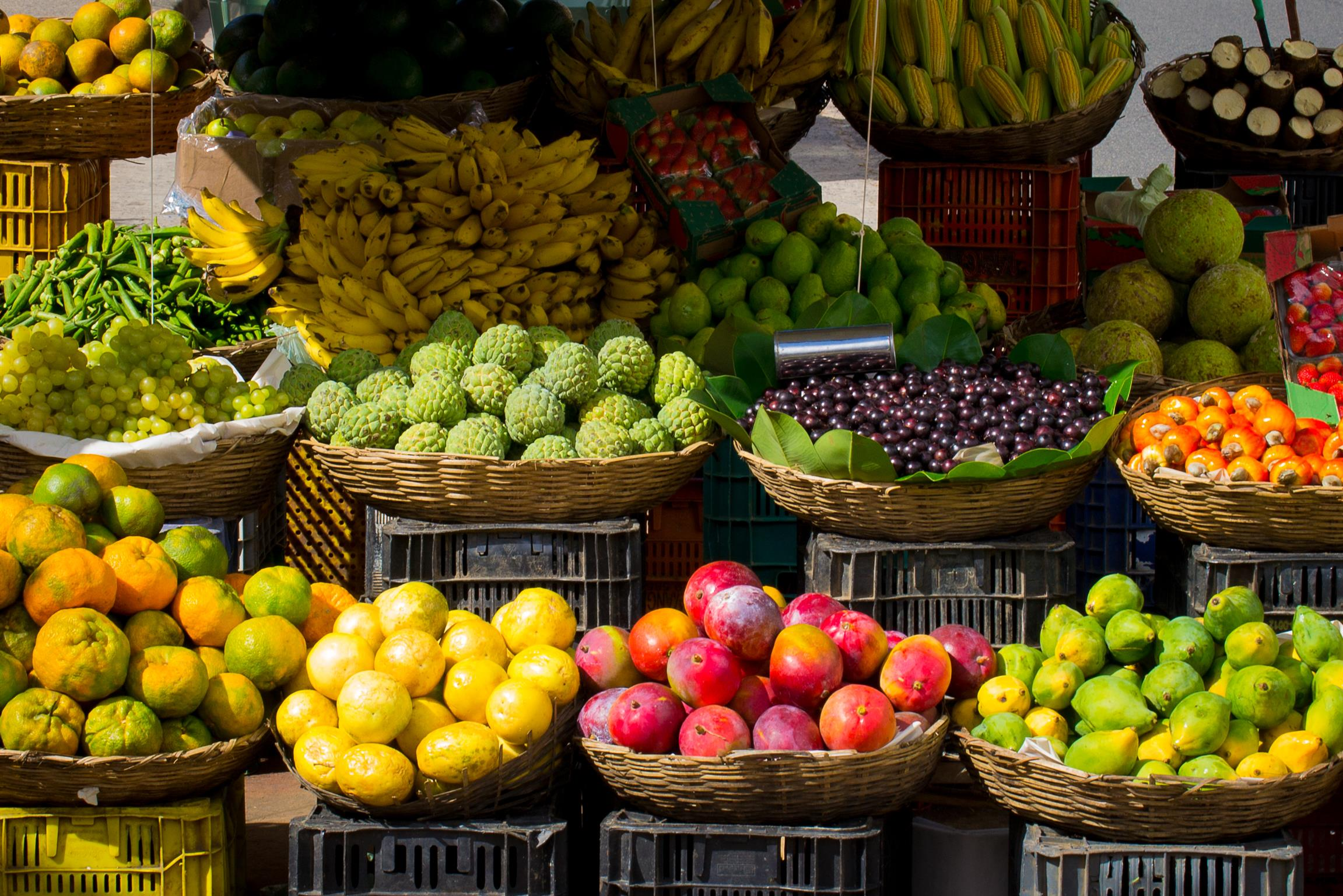 fruits-market-colors