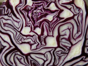 red-cabbage-293349_960_720